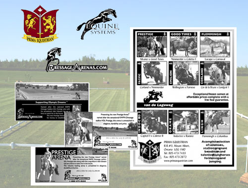 Dressage Arena branding and advertising material